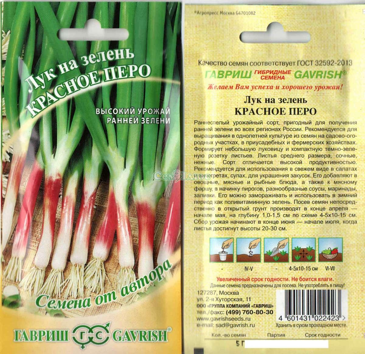 Белый лук для выращивание