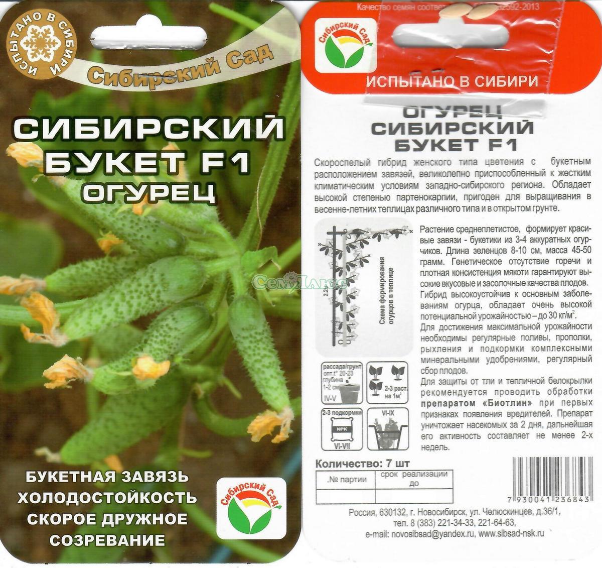 Огурцы подарок сибири отзывы 19