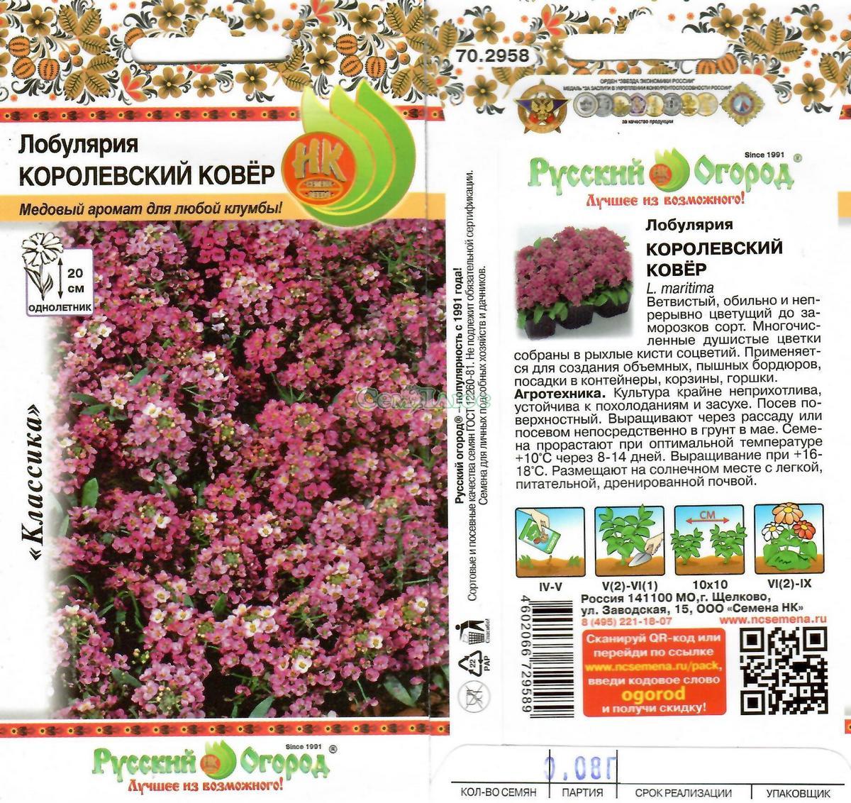 Лобулярия королевский ковёр выращивание из семян 62