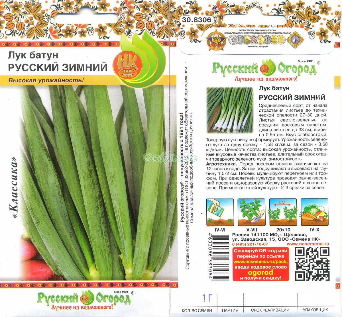 Лук батун русский зимний выращивание из семян 17