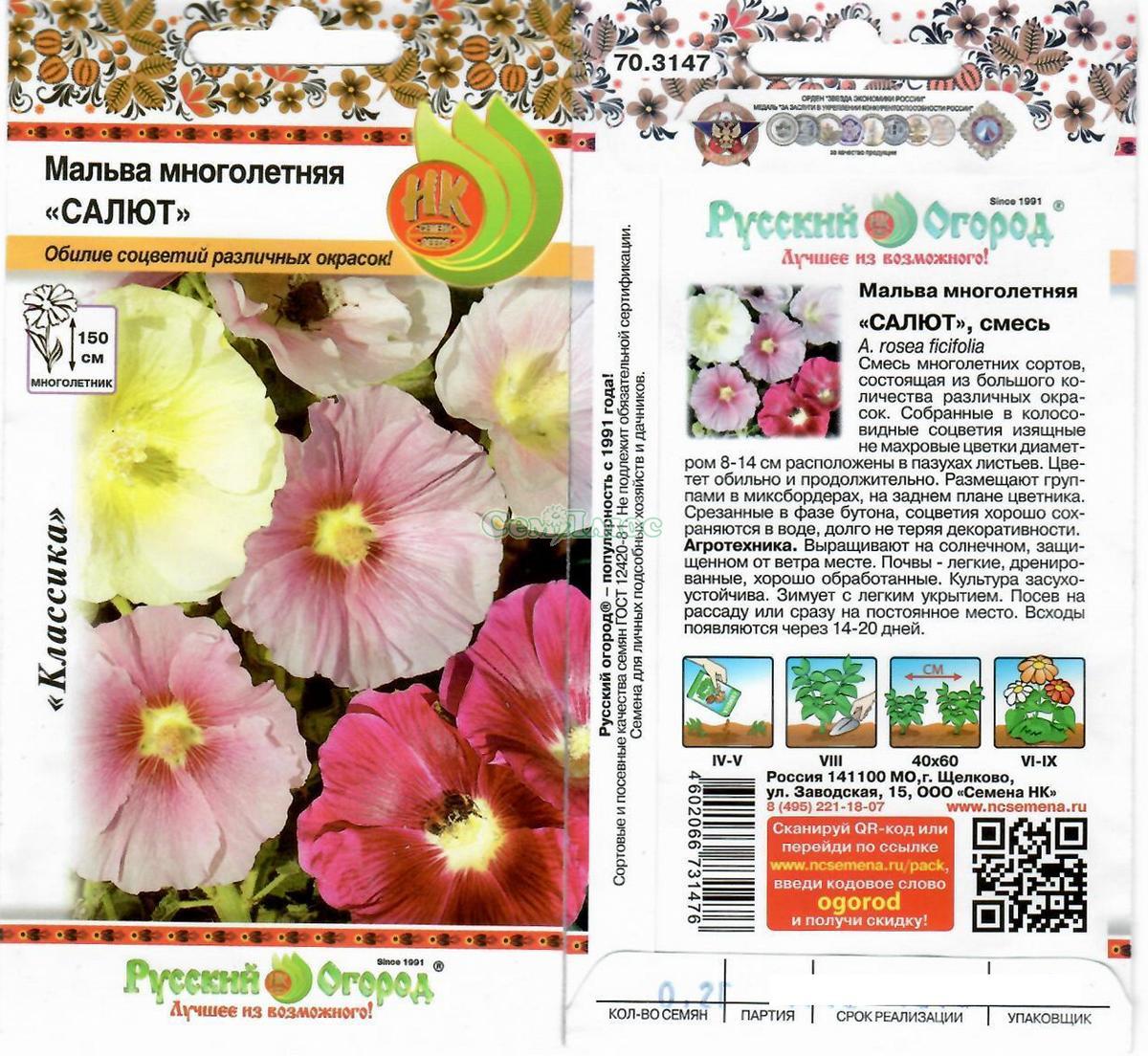 Агротехника выращивания мальва 60