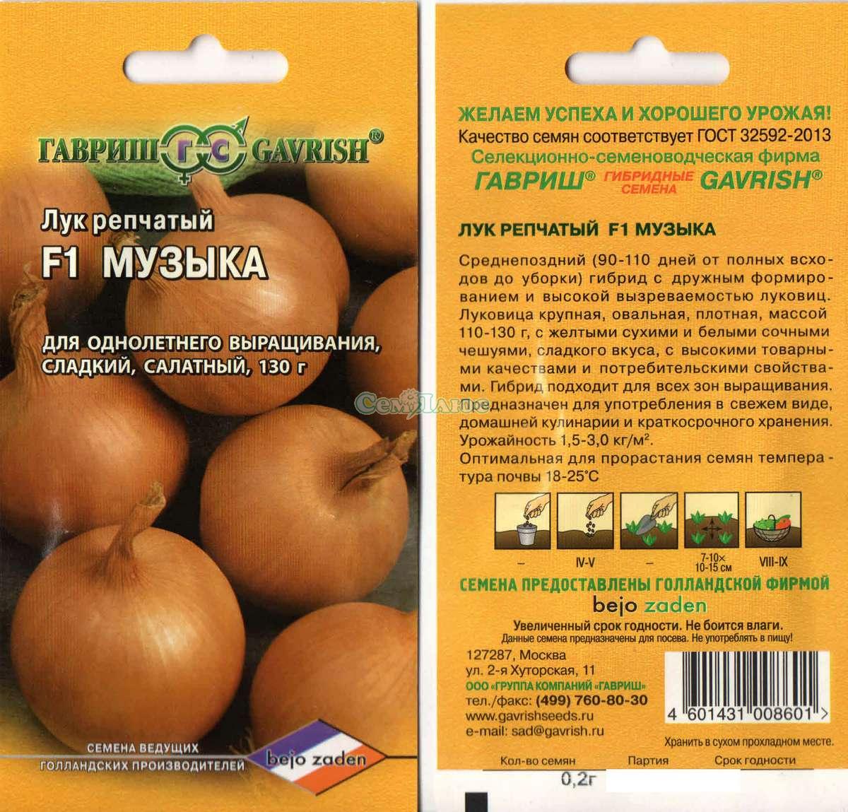 Лук сибирский однолетний выращивание 74