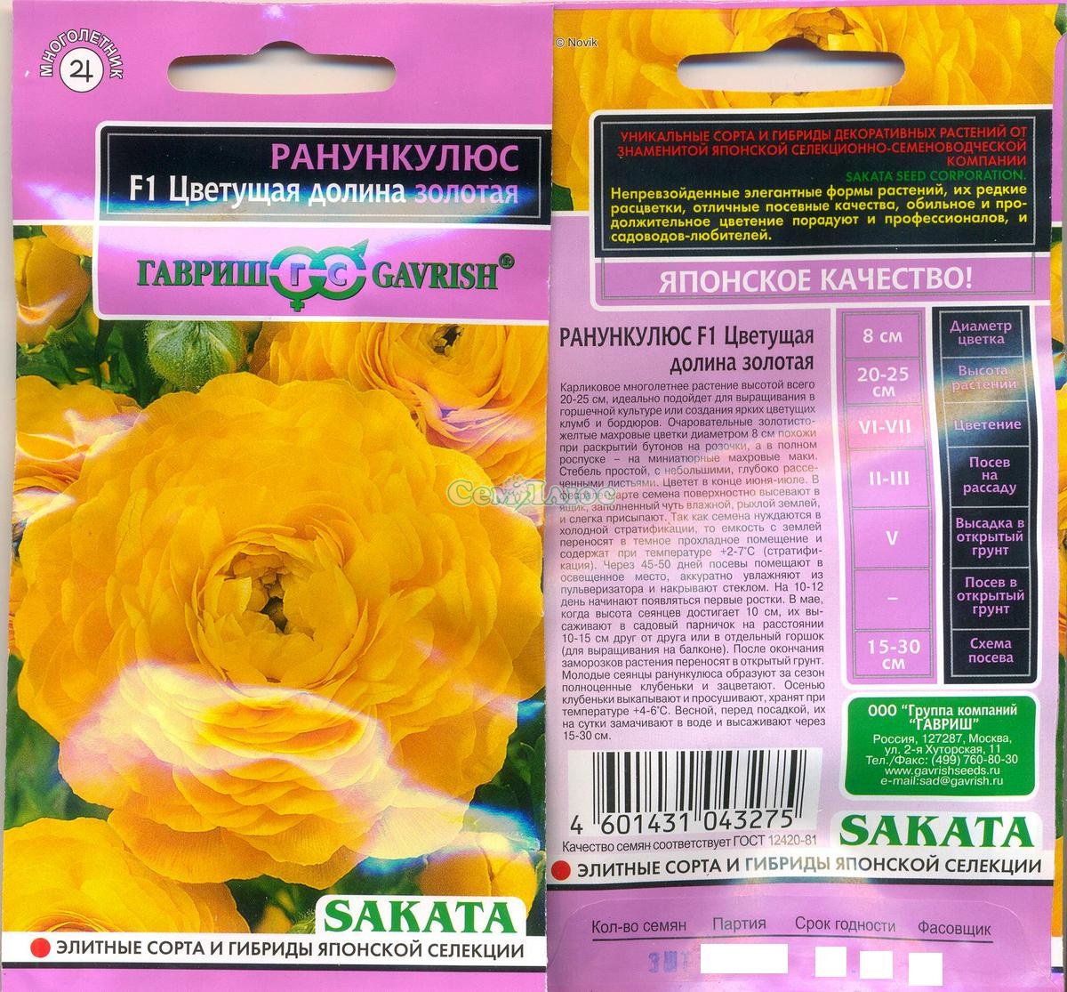 Ранункулюс цветы семена фото