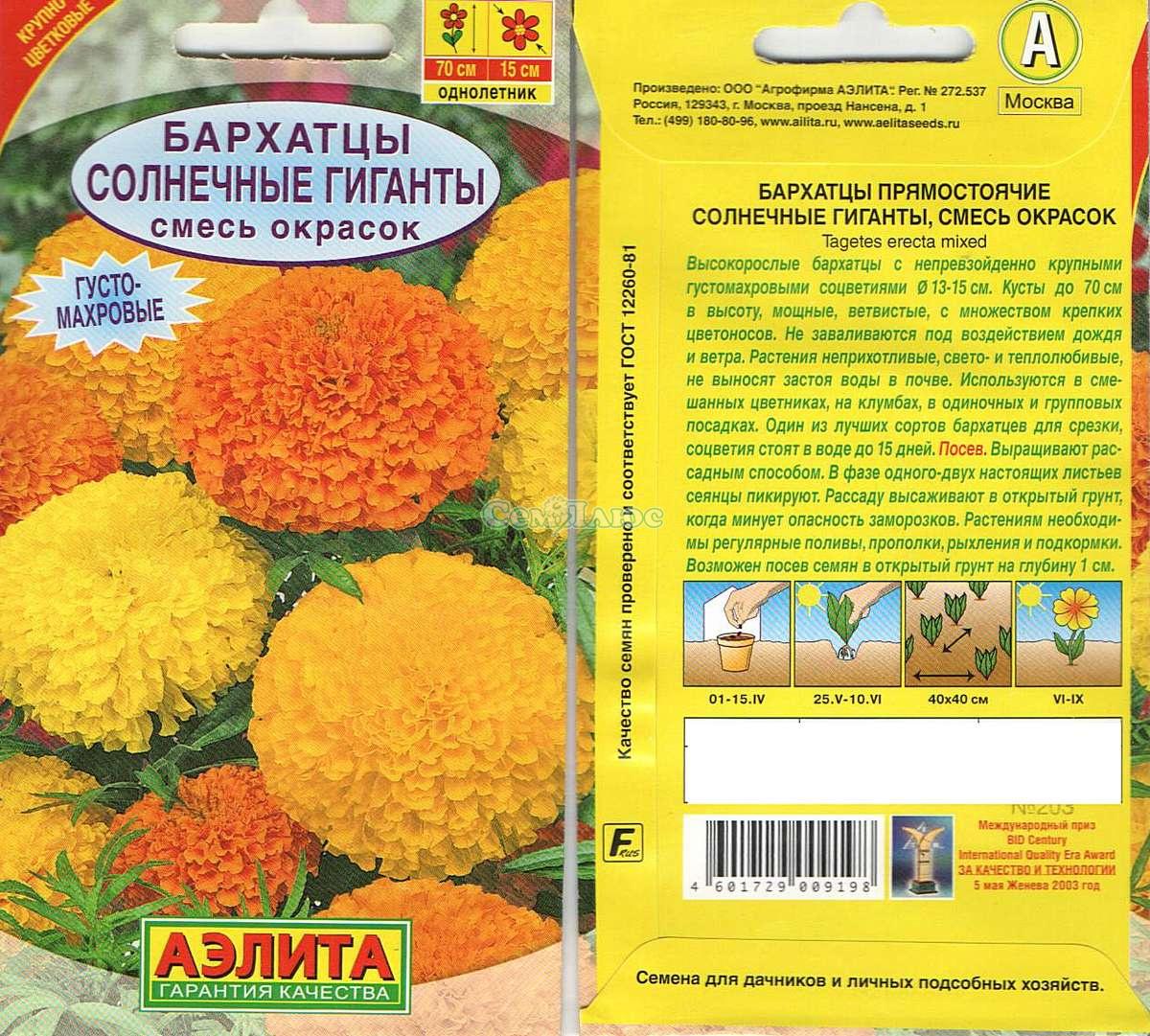 бархатцы солнечные гиганты выращивание из семян